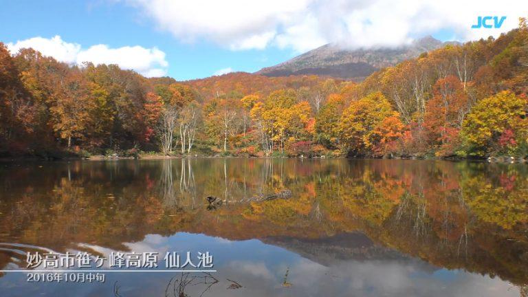妙高市笹ヶ峰高原仙人池