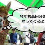 みどりのフェスティバル_キャッチ