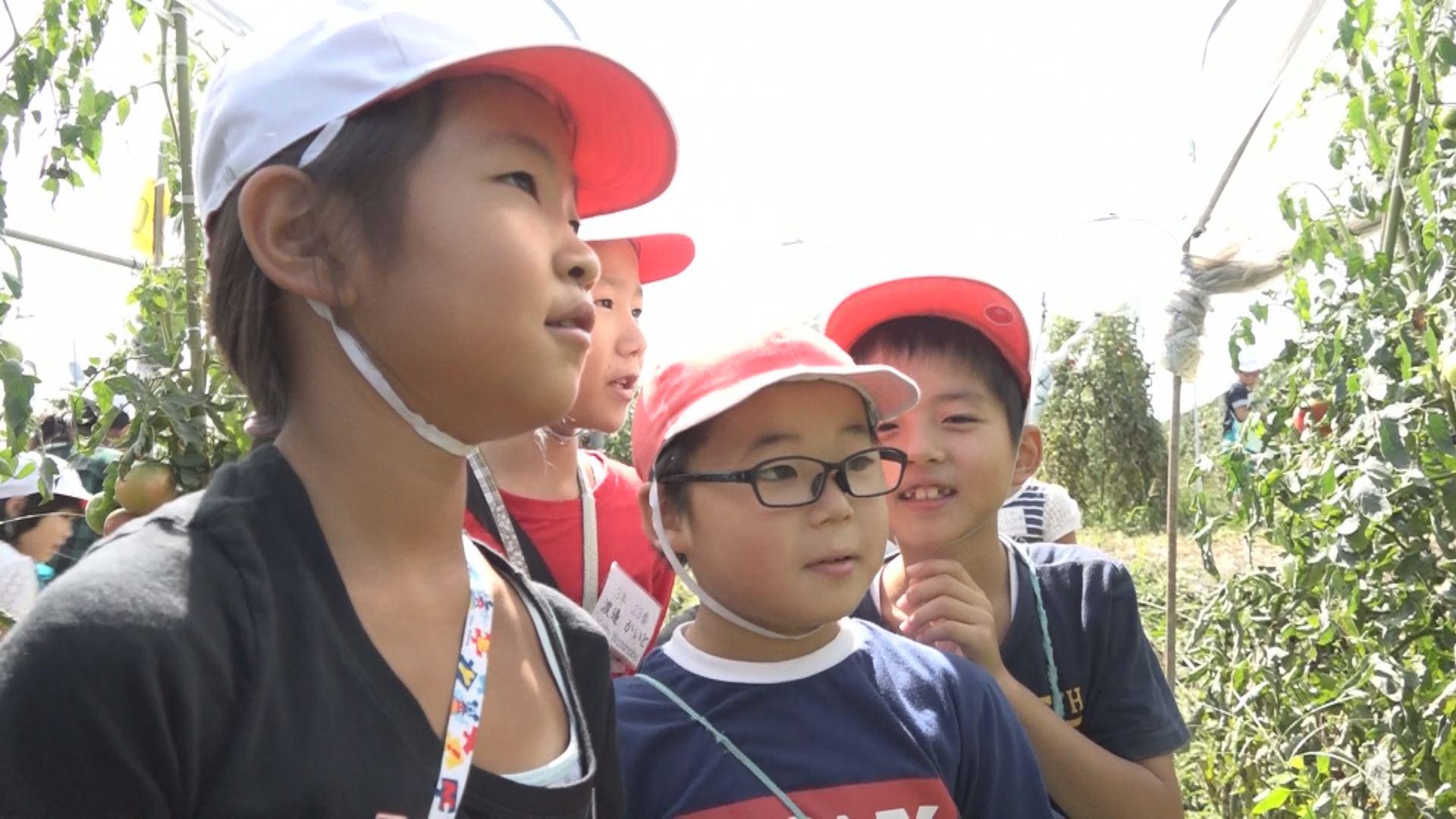 180913_妙高小児童農園見学2