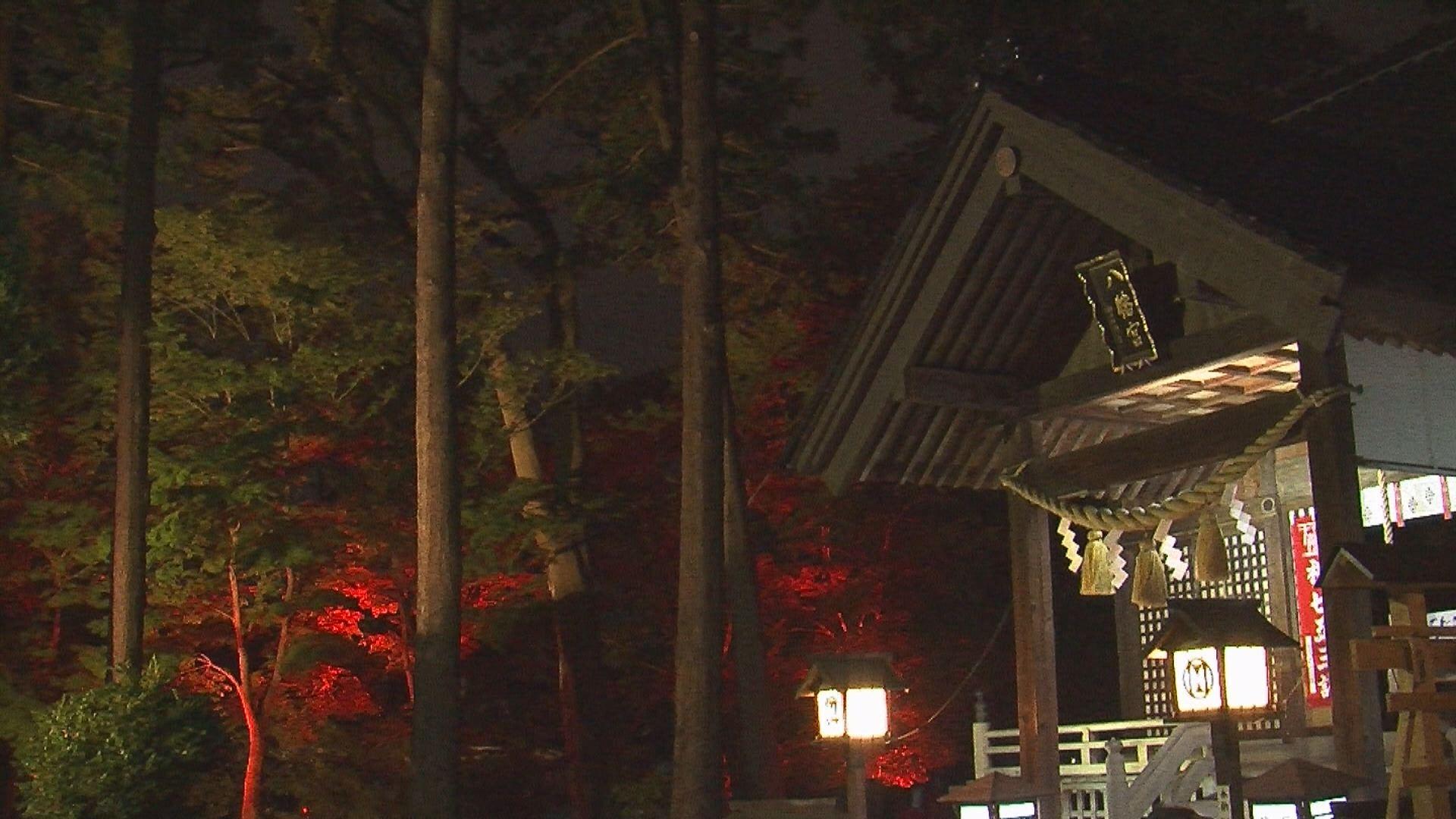 181107_陀羅尼八幡神社モミジのライトアップ2