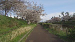 190501~百景新堀川2