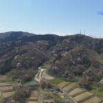 190501~百景宇山櫻1