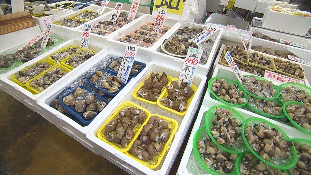 魚勢 (6)