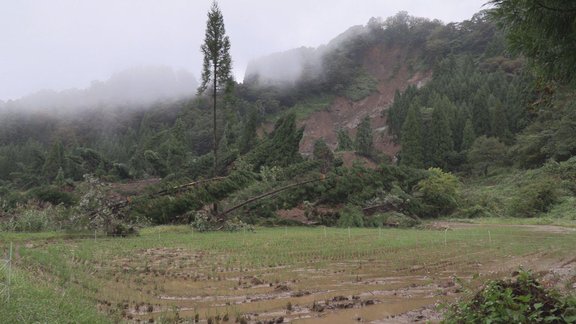 台風444