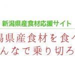 無題.jpg1111
