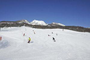 池の平温泉fスキー場1-800x533