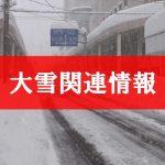 大雪関連情報