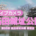高田城址公園ライブカメラ