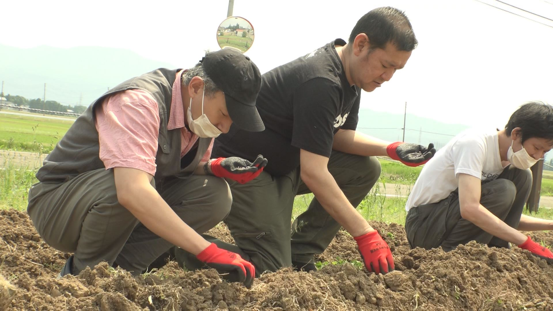 210608_つくし工房ヒマワリ種蒔き